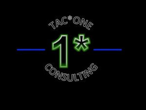 TAC*ONE Consulting Logo